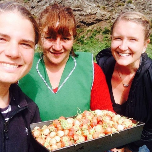 picking strawberries with evita